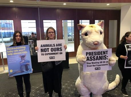 "A giant ""rat"" and other PETA supporters attended the University of Delaware's Board of Trustees meeting to call for an end to Tania Roth's sickening and useless ""child abuse"" and spinal cord injury experiments on baby rats."