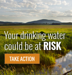 Your drinking water could be a risk | take action
