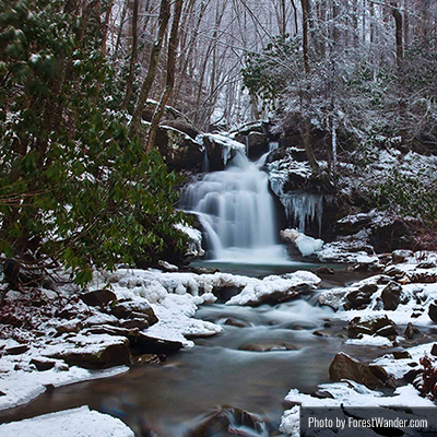 Forest Waterfall Winter Scene | Photo by ForestWander.com