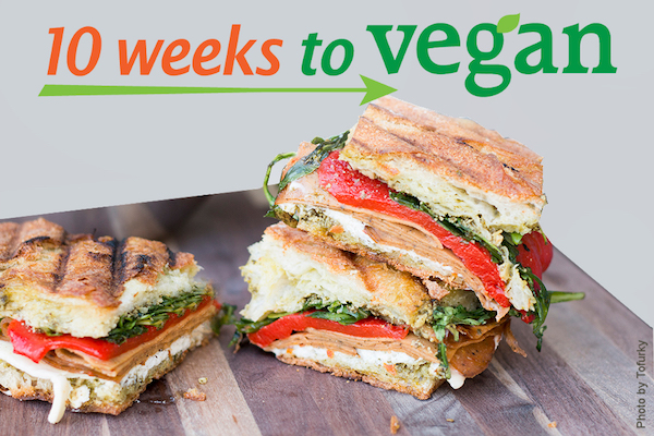 10 Weeks to Vegan with panini