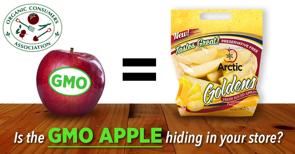 Is the GMO apple hiding in your store