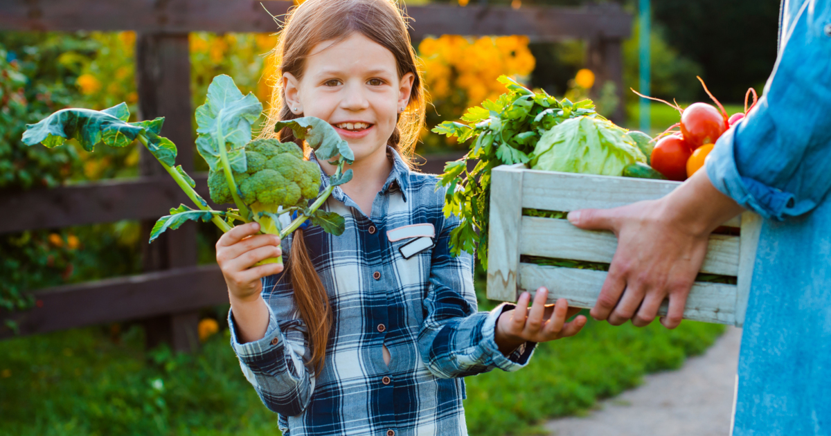 young child on a farm with a wooden box of harvested vegetables