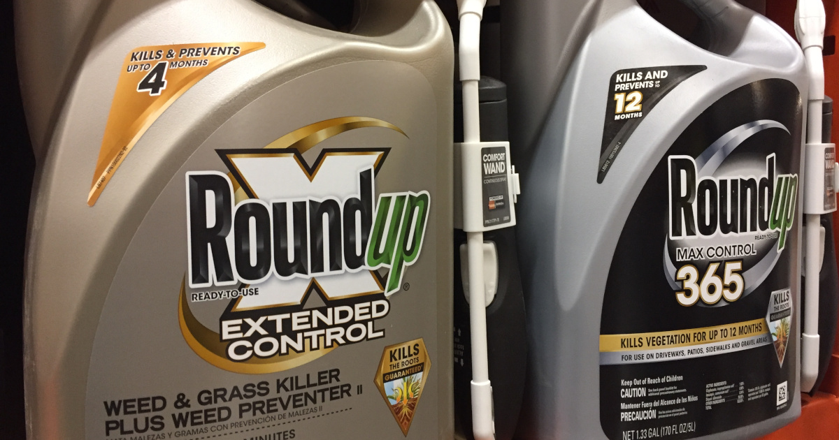 silver and gold bottles of Monsantos glyphosate herbicide ROUNDUP on store shelves