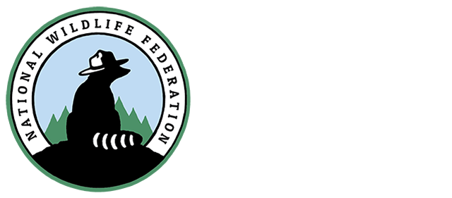 The National Wildlife Federation Great American Campout
