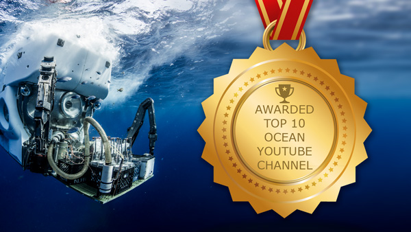 you tube award