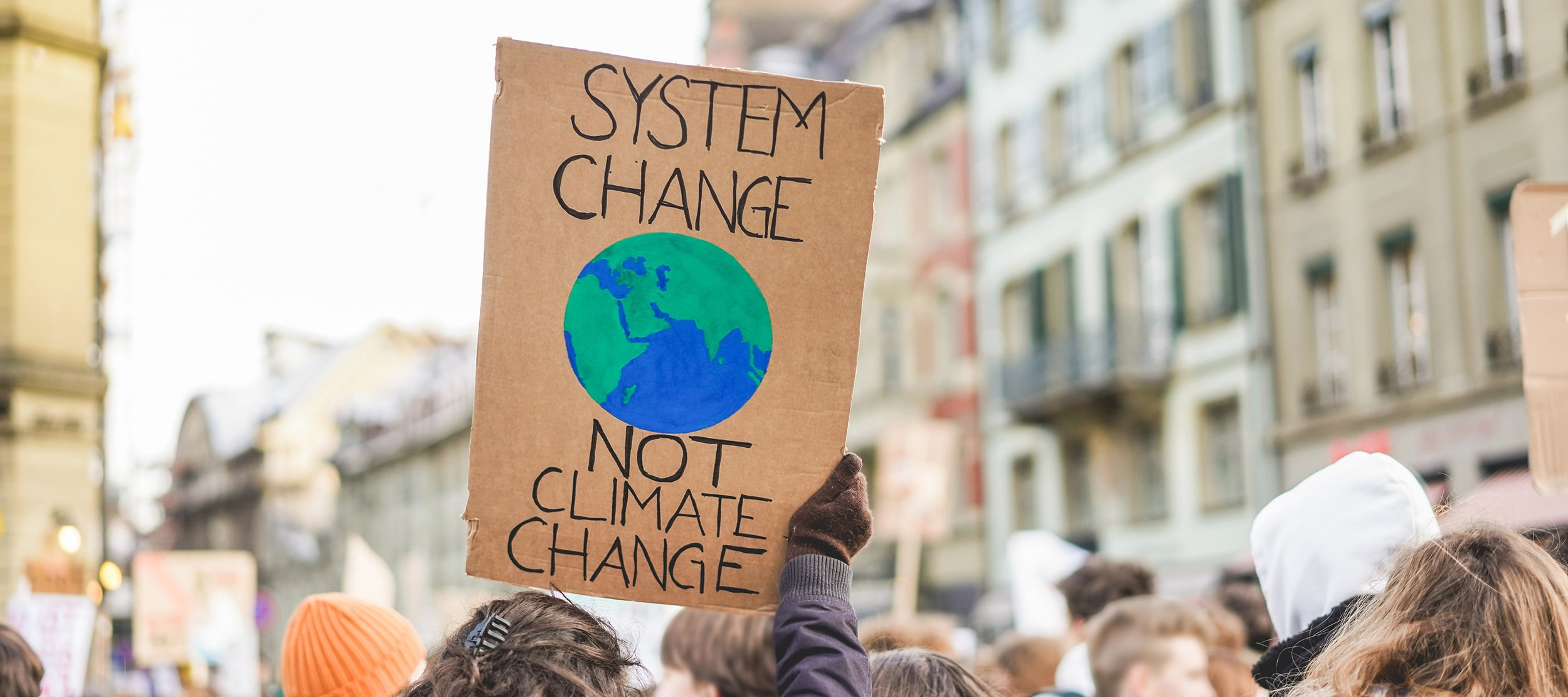 "Crowd of protesters, with one person holding up sign that reads ""system change not climate change"" with a painted globe"
